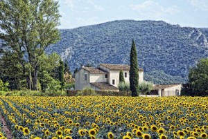One Day In Provence Location De Voiture Avec Chauffeur